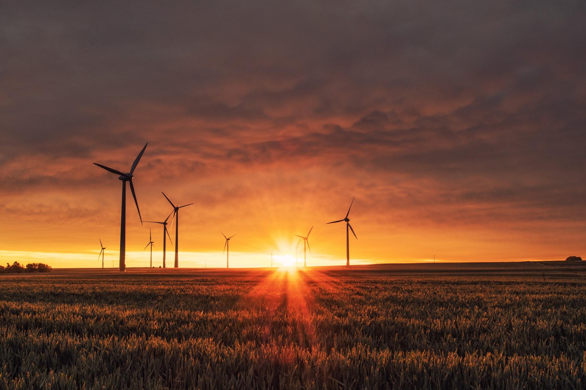 CEMEX Polska stawia na odnawialne źródła energii w walce  ze zmianami klimatu