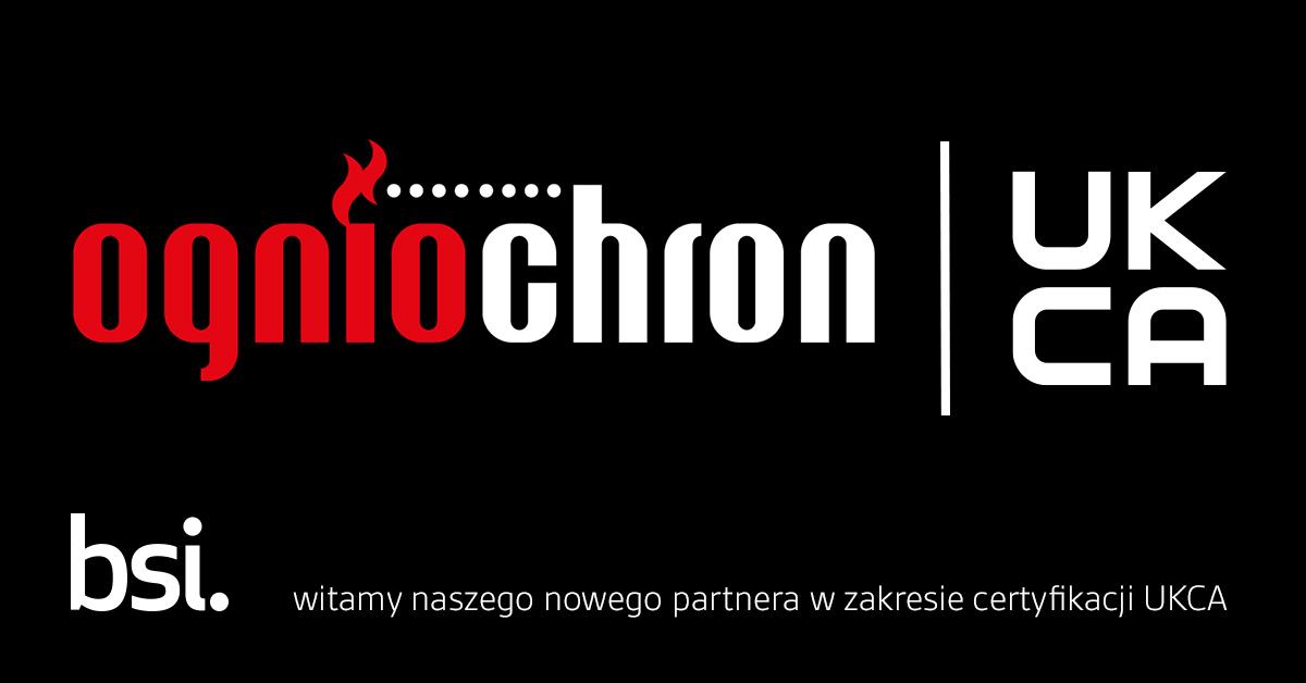 Współpraca KZWM Ogniochron i BSI